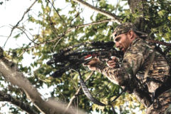 Bloodsport Crossbow Arrows: Get the Most out of Today's High-Speed Bows