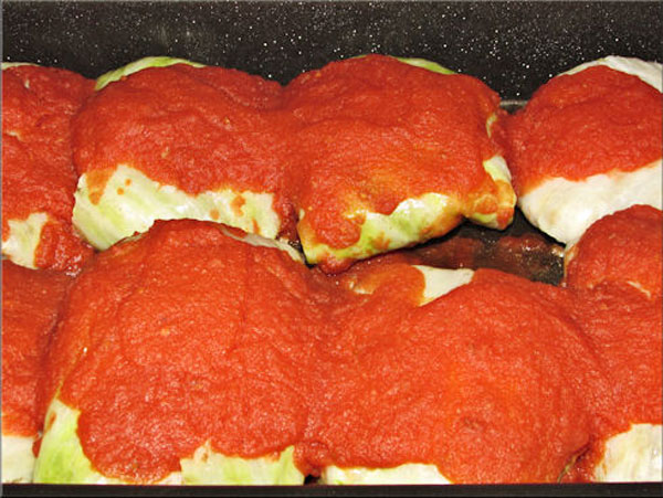 Pan full of stuffed cabbage leaves with sauce poured over each leaf ready for oven.