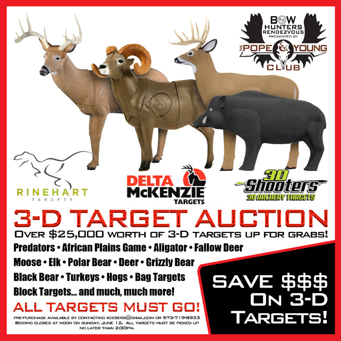 3-DTargetAuctionGraphic