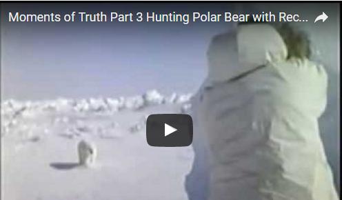 Bowhunting Classic: Polar Bear