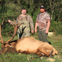 Scholastic 3-D Archery  Offers Kentucky Bull Elk Tag Drawing To Support Youth Archery