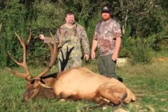 S3DA Offers Kentucky Bull Elk Tag