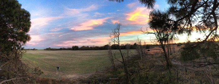 What a beautiful back drop for bowhunting turkey.
