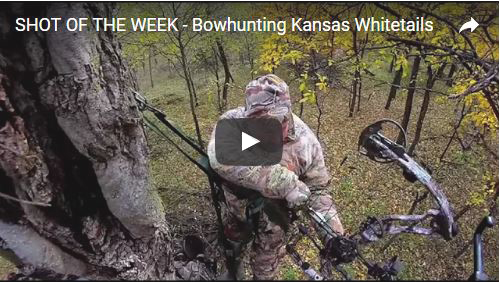 SHOT OF THE WEEK – Bowhunting Kansas Whitetails
