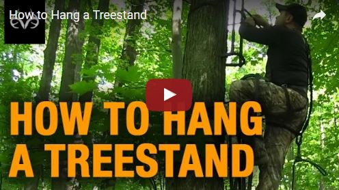 How to Hang a Treestand