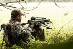 The Pros & Cons of Hunting with a Crossbow