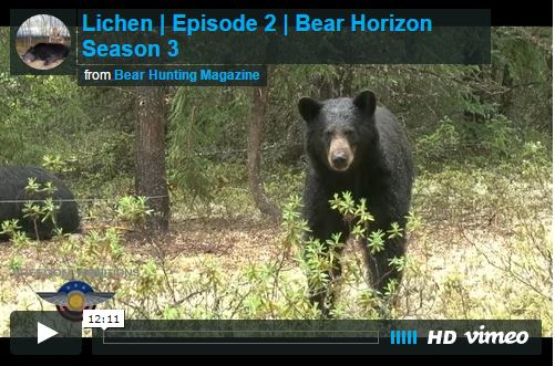 Saskatchewan Lichen – Bear Horizon Season 3:  Episode 2