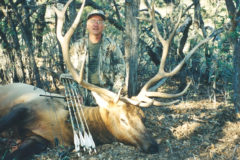 An Empty Quiver: Chapter 14.  A Field Guide to Elk   – Pt 2