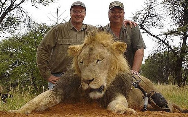 Walter Palmer with his legally taken African Lion named Cecil.