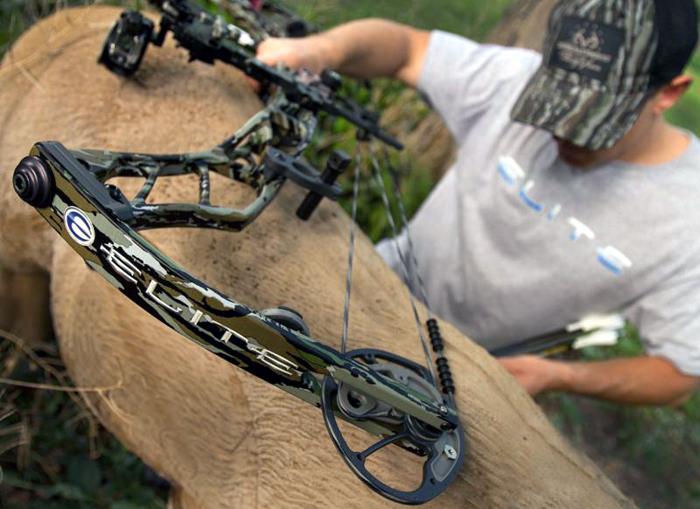 e7d452b6 Elite Archery Offering LIMITED EDITION: Custom Impulse Series Bow in Realtree  Original Camo