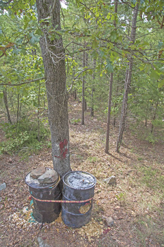 The new bait location in Oklahoma. The author moved his stand about 50 yards from where he killed a Boone and Crockett bear last year.
