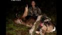 Fallow Deer Bowhunt In New Zealand