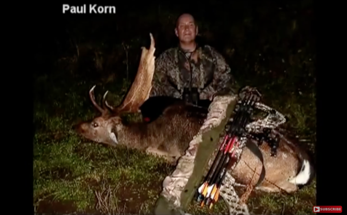 Fallow Deer Bowhunt In New Zealand