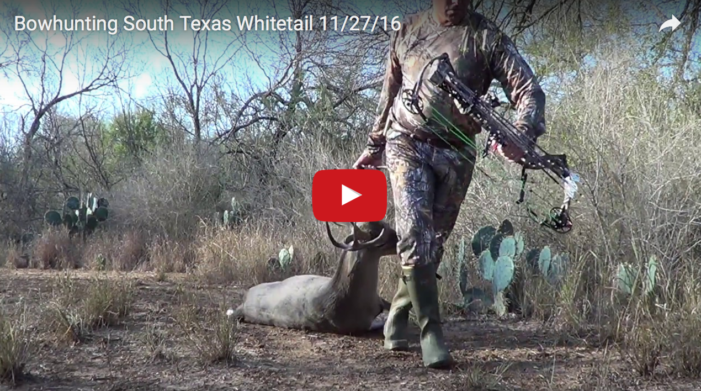 VIDEO: South Texas Bowhunt