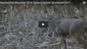 VIDEO: Bowhunting Wisconsin 2016