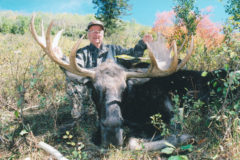 An Empty Quiver: Chapter 18.  Once-in-a-Lifetime Moose