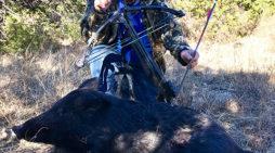 Duck's Wild Boar Recovery