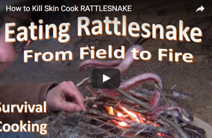 How To Kill, Skin and Cook RATTLESNAKE