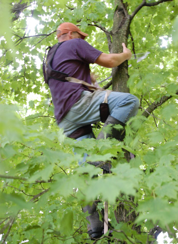 It Can Happen to You: Treestand Safety