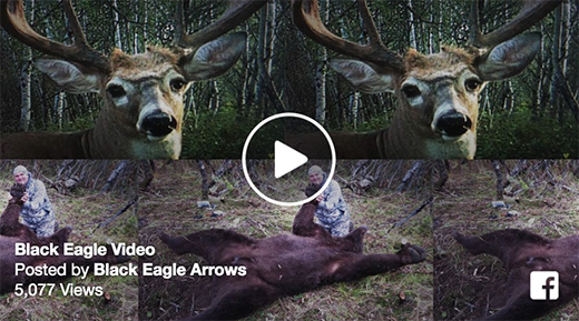 VIDEO: 30 Seconds Of Black Eagle Arrow Action