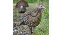 Matt Morrett: 10 Turkey Decoy Tips For Success