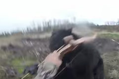 Bear Attack On Video!