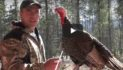 VIDEO: Where To Aim On A Wild Turkey