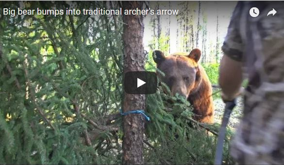 Clay Newcomb: Black Bear at 3 Yards!