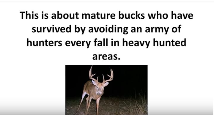 Stop Spooking Your Big Bucks
