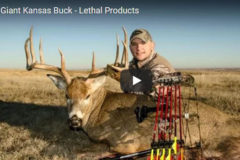 Giant Kansas Buck Meets Lethal End