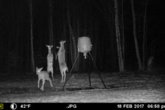 Gear Review: Moultrie Game Cameras and Ani-Logic