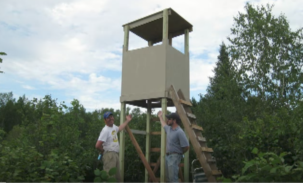 Build A Deer Blind Fast Bowhunting Net