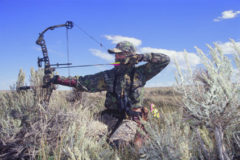 DIY Speed Up Your Bow