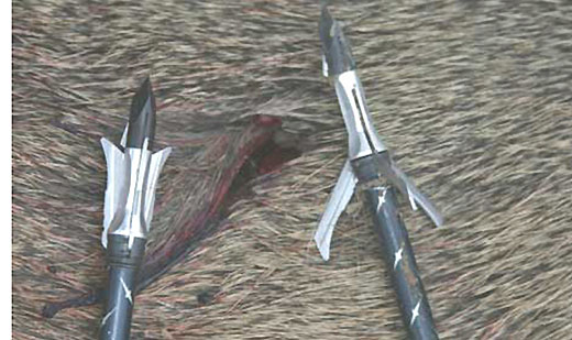 Mechanical Broadheads: Yes? No? Maybe?