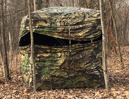 Bowhunting Danger in the Blind