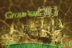 Grow 'Em Big