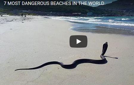 Most Dangerous Beaches