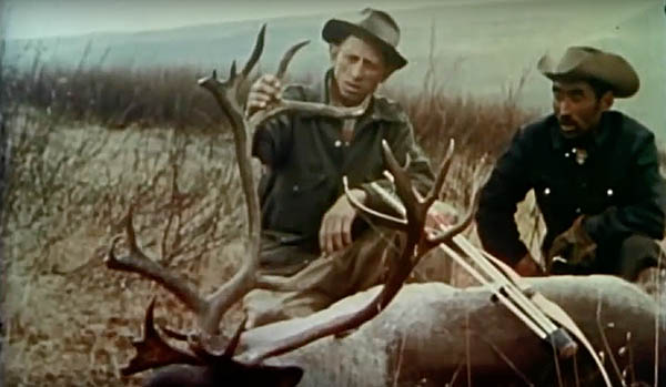 FRED BEAR STALKS SHEEP and CARIBOU