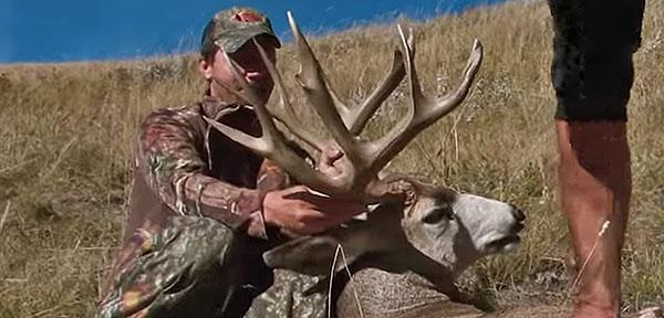 Tim Wells 200″ Mule Deer