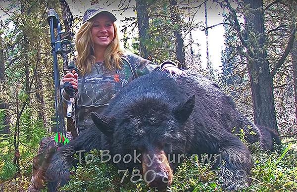 Stalking Huge Black Bear