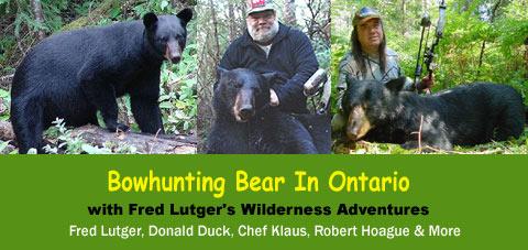bowhunting black bear