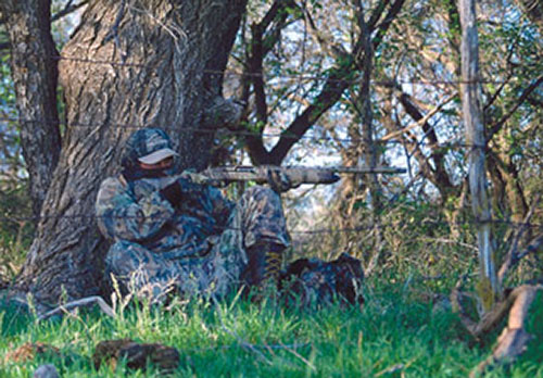 Is Turkey Hunting Safe?