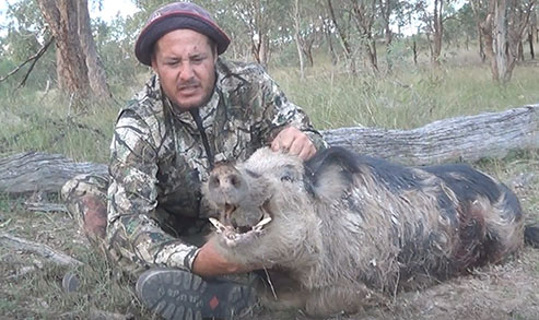 BOWHUNTING BOARS IN QUEENSLAND
