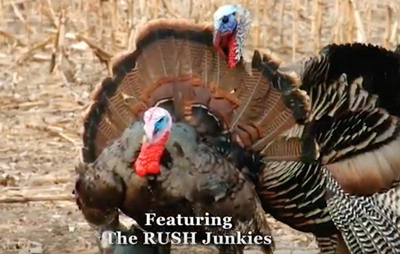 The Rush TV: Kansas Bowhunt for Gobblers