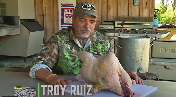 Plucking A Wild Turkey