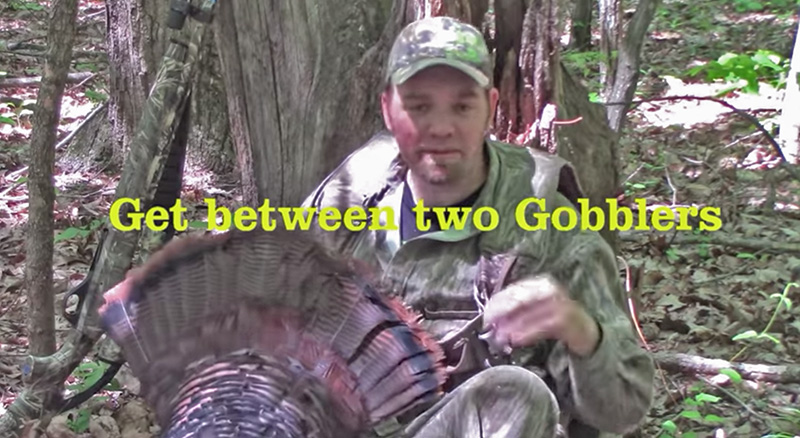 Two Gobblers? Set Up Right!