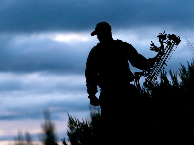 Which Is Better: Morning Or Afternoon Bowhunts