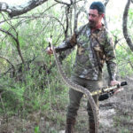 Bowhunting For Deadly Texas Rattlesnakes